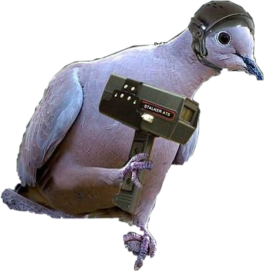 The birds work for the bourgeoisie #hehe #freetoedit