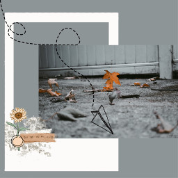 freetoedit nature autumn weather frame