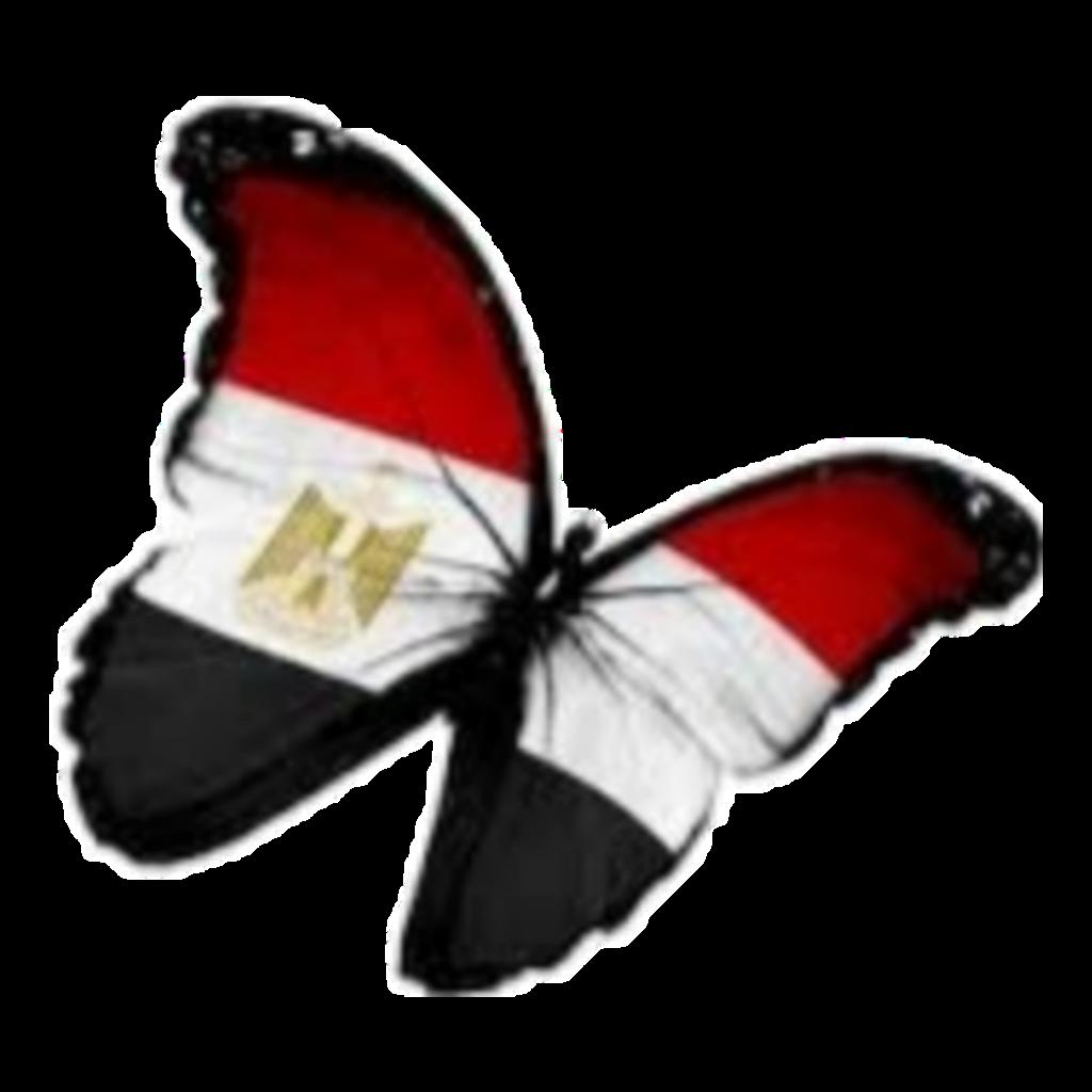 #egypt #butterfly #flag