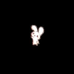 kawaii cute bunny rabbit freetoedit