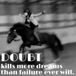 freetoedit quote horse pony gibson
