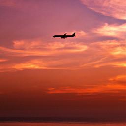 freetoedit airplane plane aeroplane sky