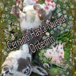 freetoedit buenas