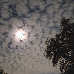freetoedit samsungphotography myoriginalphoto cloudsandsky texassky