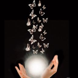 myedit imagination fantasy butteeflies madewithpicsart myedit myart mystyle surreal freetoedit