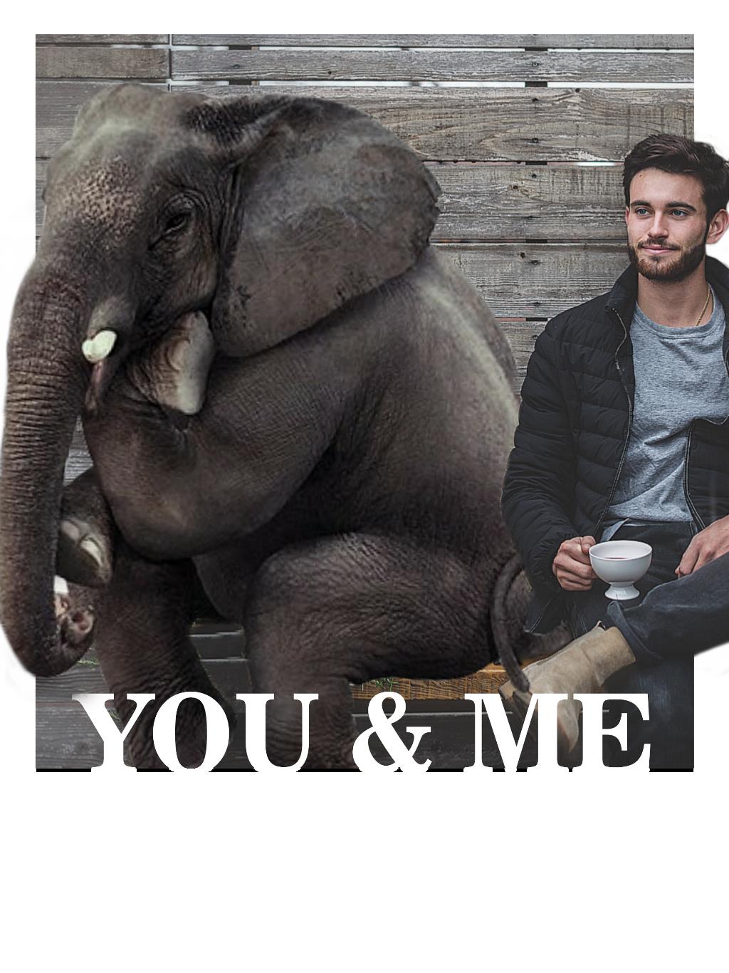 #freetoedit#madewithpicsart#love#elephant#men#cool#beauty#nice#friends#friend#remix#remixit#fun#lol#wonderful#weekend#mrlb2000 @pa @freetoedit happy Weekend ☺️☕