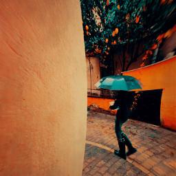 umbrella colorful street