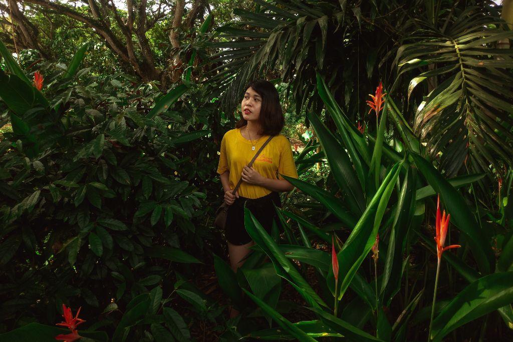 Lost In The Tropics #freetoedit #mobilephotography #Zenfone #Zenfone5