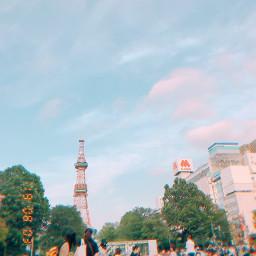 hokkaido park polaroidphoto travel