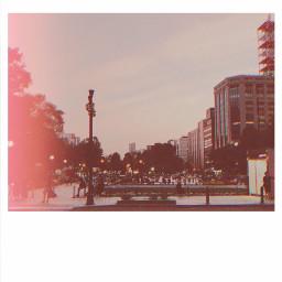 hokkaido park travel polaroidphoto