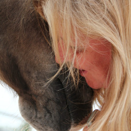 trust passion horsephotography simple intersting