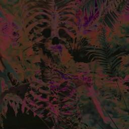 freetoedit interesting tropical art highnoon
