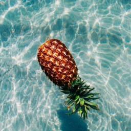freetoedit aesthetic pastel piña pinneapple