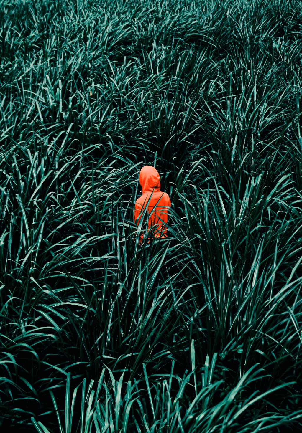 #freetoedit #grass #green #people #red