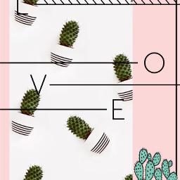 freetoedit love kaktus🌵 kaktus🌵❤ kaktus irccactibackground cactibackground