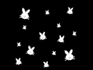 white bunny rabbit overlay cute freetoedit