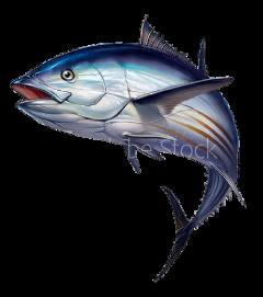 tuna fish freetoedit