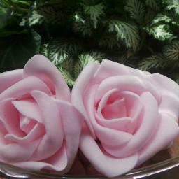 artistic flowers interesting freetoedit flower