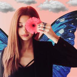 freetoedit butterfly butterflies butterflyaesthetic aesthetic ircgirlwithaflower
