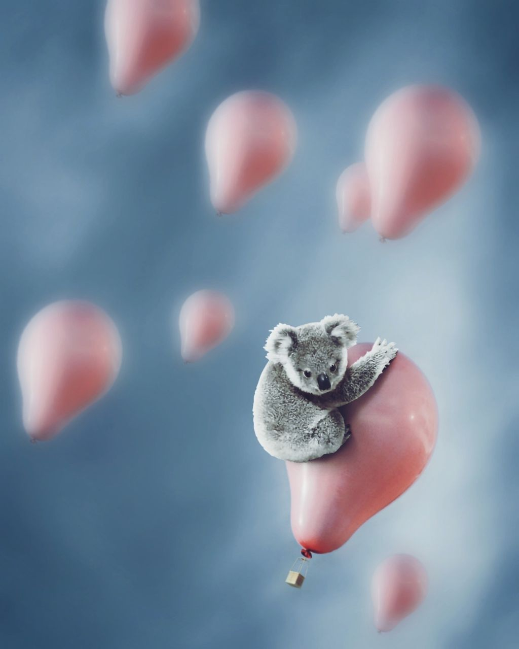 Hang in there! 🐨💞 Tag a friend who needs to see this top-koalaty edit ⬇️ Remix by @behhha👏 #cute #kawai #balloons #koala #freetoedit