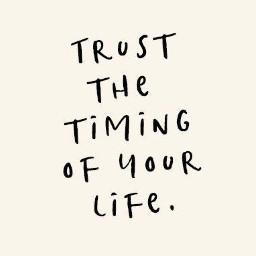freetoedit trust timing life pinterest