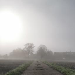 fog haze way photography nature pcgloomyweather gloomyweather