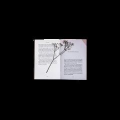 book flower dried driedflower craft freetoedit