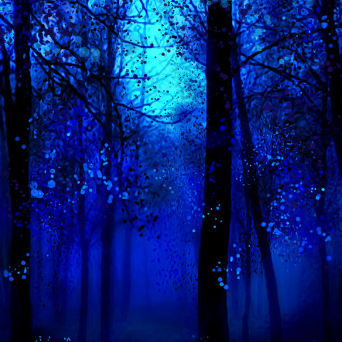 #myart,#mydesign,#dcnightforest,#nightforest,#topten