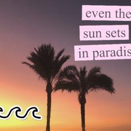 sunset paradise vsco waves palmtrees freetoedit