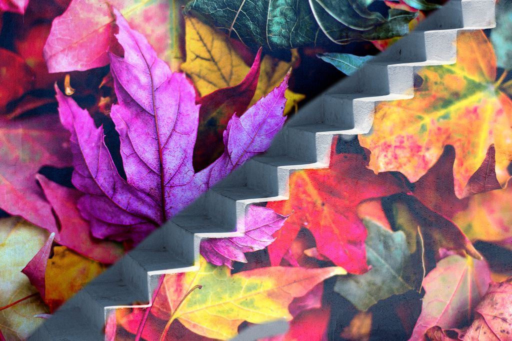 #freetoedit #stairway  #leaf #colorful #autumn #autumnleaves #autumnleaf #art #myart #mystyle #becreative #creativity #madewithpicsart #autumnvibes #remixit