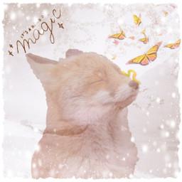 magic fox wintertime freetoedit