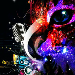 freetoedit myedit cat eye music irccatglance catglance