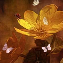 freetoedit @asweetsmile1 golden butterflies butterfly