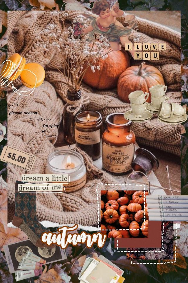 #autumn #aesthetic #vintage #vintageaesthetic #retro #retroaesthetic #fall #cozy #collage #cute #szn #season