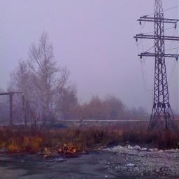 photography autumn fog