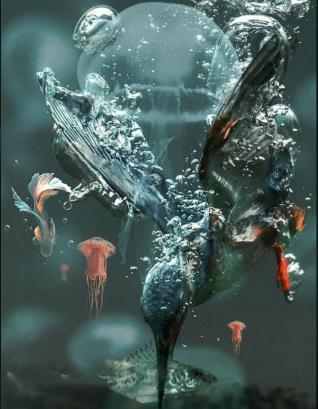 #picsartedits #madewithpicsart  #freetoedit  #ircredjellyfish #redjellyfish