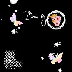frame big dream love butterfly freetoedit