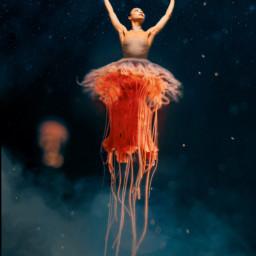 freetoedit sea jellyfish red humananimalhybrid mveffect