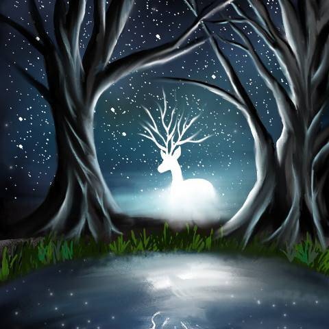 #freetoedit,#dcnightforest,#nightforest,#expectopatronum