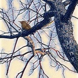 edit effect wonderland bird freetoedit