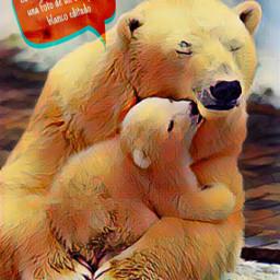 freetoedit oso osos osospolares jajajajajajajajajaj