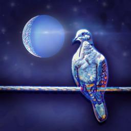 bird moon blue vipshoutout madewithpicsart freetoedit