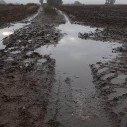 tracks landscape raindays puddles muddy freetoedit