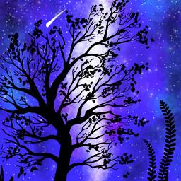 freetoedit dcnightforest nightforest