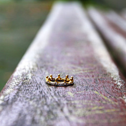 interesting bench ring crown nature