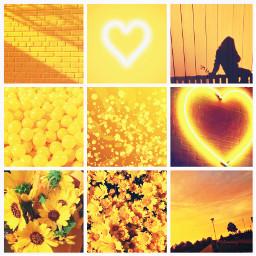 yellow aesthetic grid aestheticgrid