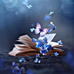 freetoedit butterfly softlight book openbook