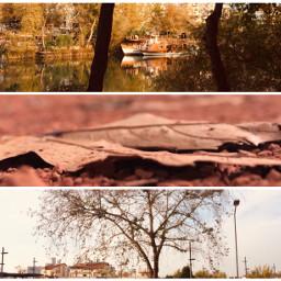 layout kolaj mix remix art ccautumnmoodboard autumnmoodboard moodboard autumn collage