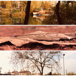 layout kolaj mix remix art ccautumnmoodboard autumnmoodboard moodboard autumn collage