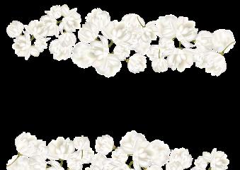 wedding flowers freetoedit